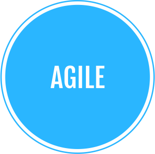 Incap agile