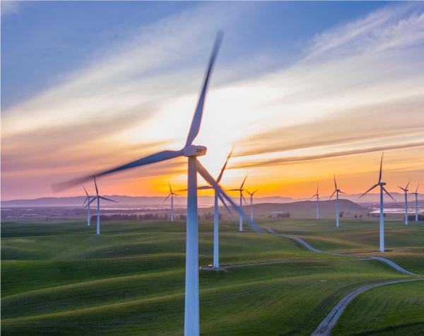 Environmenta _Green energy